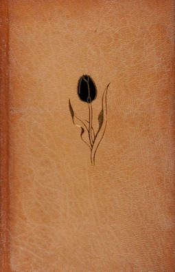 Dumas, Alexandre - The Black Tulip, ebook