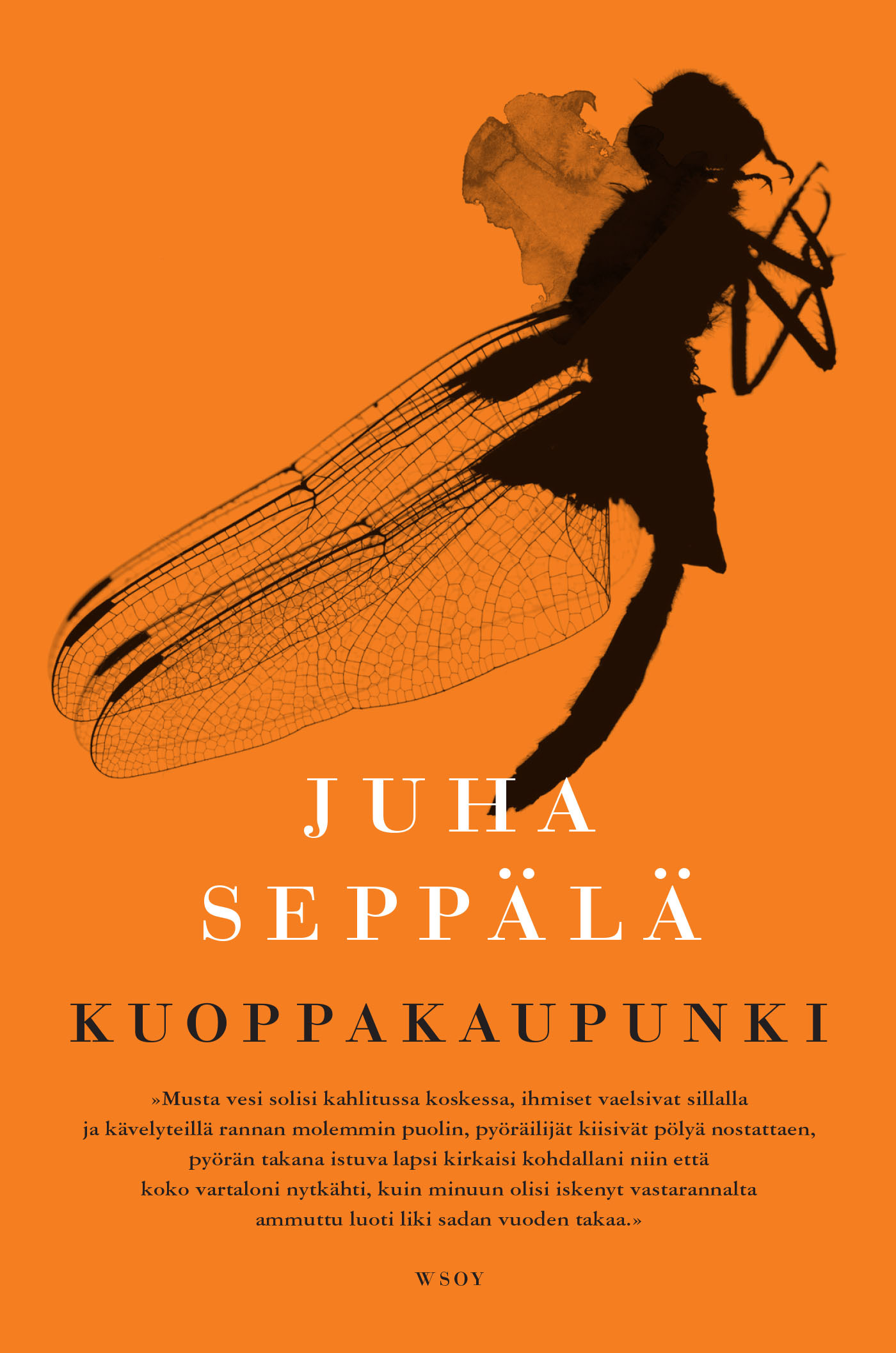 Seppälä, Juha - Kuoppakaupunki, e-kirja