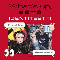 Toiviainen, Mikko - What's up, elämä: Identiteetti, äänikirja