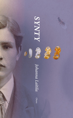 Laitila, Johanna - Synty, e-bok
