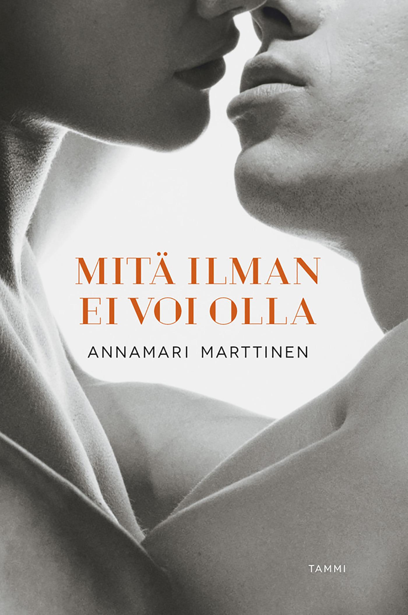 Marttinen, Annamari - Mitä ilman ei voi olla, e-bok