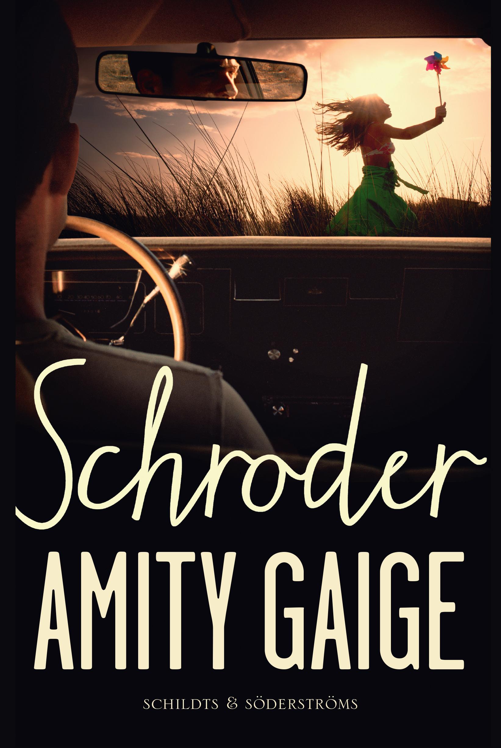 Gaige, Amity - Schroder, e-kirja