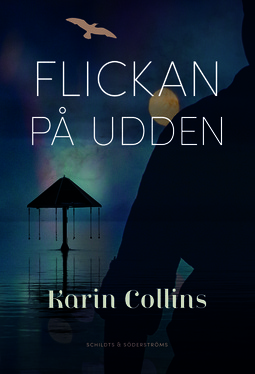 Collins, Karin - Flickan på udden, ebook