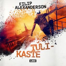 Alexanderson, Filip - Tulikaste, äänikirja