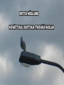 Höglund, Riitta - Kevättuuli soittaa itkevää huilua, e-kirja