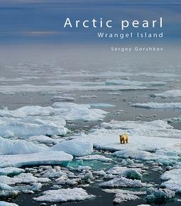 Gorshkov, Sergey - Arctic pearl – Wrangel Island, ebook